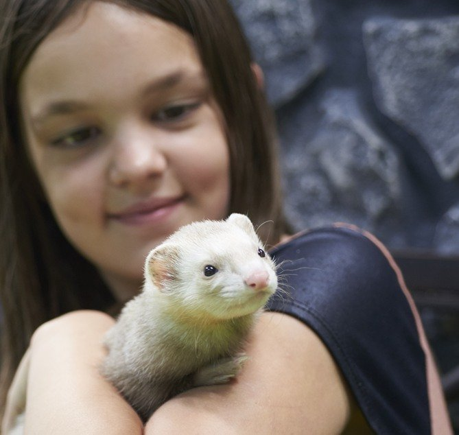 girl with rat