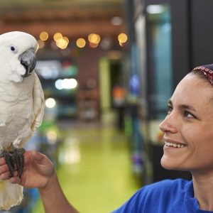 Bird being boarded at Friendly Pets