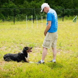 Owner with dog at the Friendly Pets Dog Park in Lee